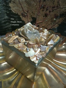 Opalescent Rugged Shell Box with polished shells and crystals