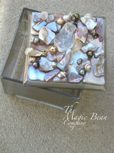 Shell Box2